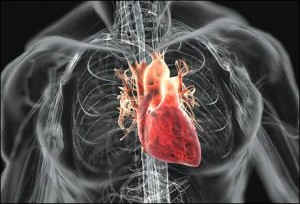 Treatment for heart attack patients a step closer experimental close academic and industry collaborations between gsk and nihr cambridge brc drive forward new clinical trials for heart disease ccuart Image collections
